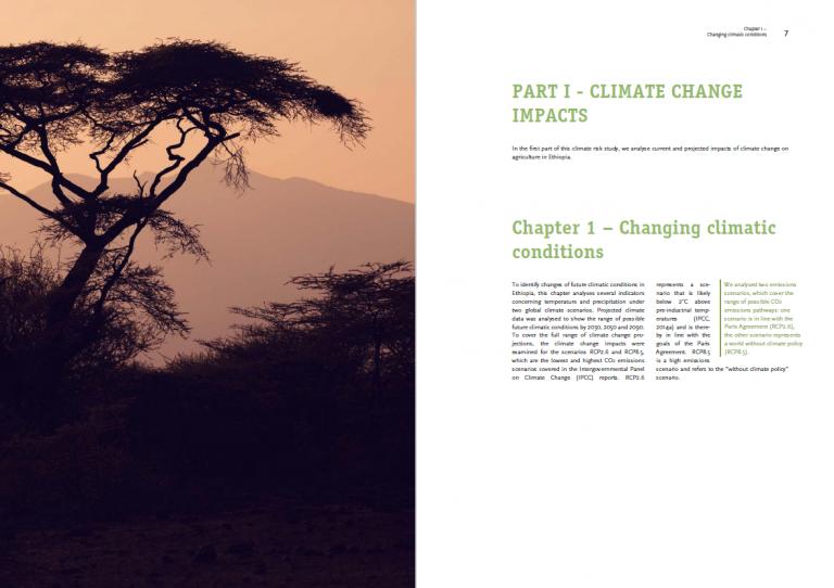 Ethiopia Climate Risk Analysis